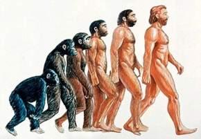 La Religión Wahabi Salafi y laEvolución
